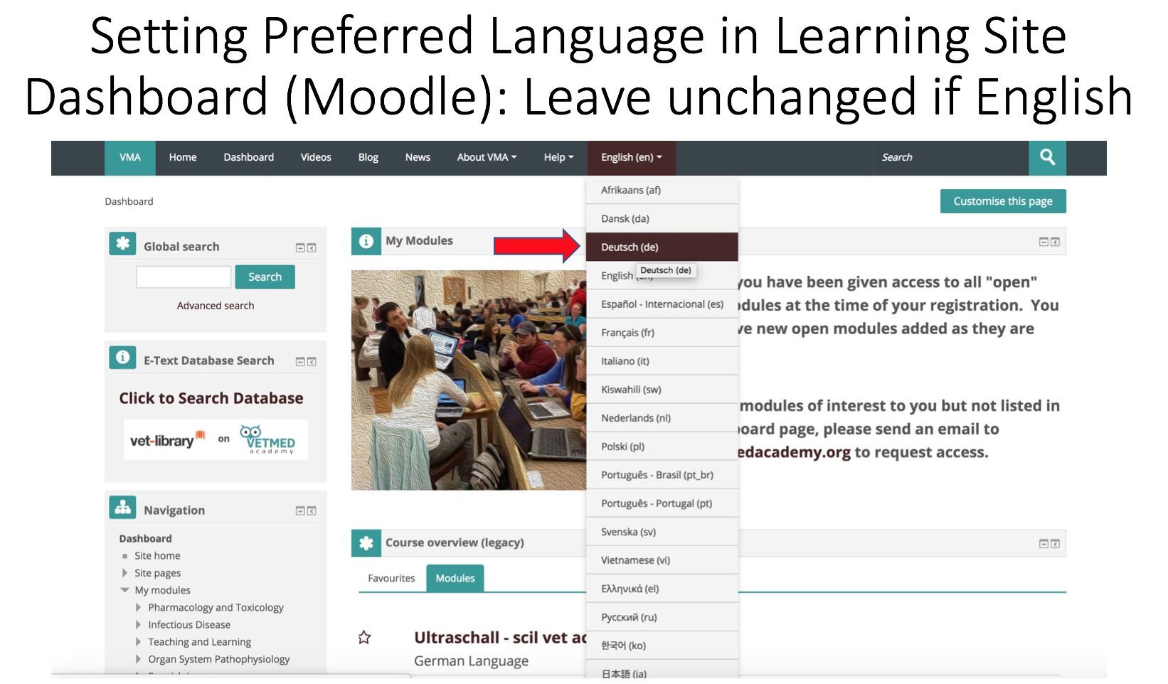 Setting Preferred Language on LMS Site