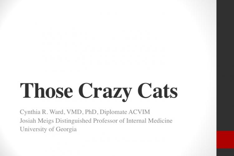 Those Crazy Cats Title