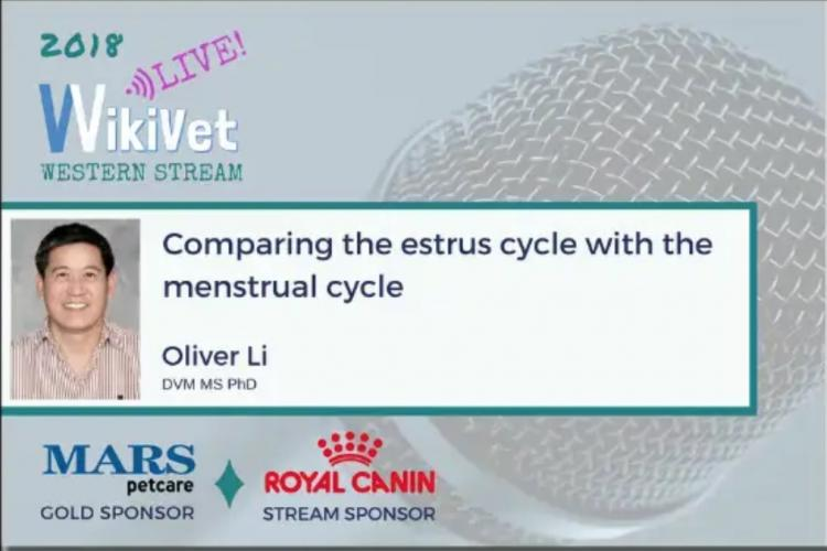 Comparing Estrus with Menstrual Cycle